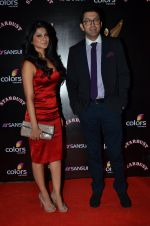 Jennifer Winget at Sansui Stardust Awards red carpet in Mumbai on 14th Dec 2014 (960)_548fd06ecf3fd.JPG