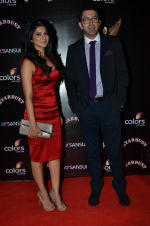 Jennifer Winget at Sansui Stardust Awards red carpet in Mumbai on 14th Dec 2014 (961)_548fd0705e453.JPG