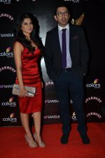 Jennifer Winget at Sansui Stardust Awards red carpet in Mumbai on 14th Dec 2014 (963)_548fd072a52dd.JPG