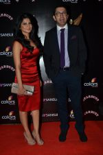 Jennifer Winget at Sansui Stardust Awards red carpet in Mumbai on 14th Dec 2014 (964)_548fd073b443e.JPG