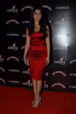 Jennifer Winget at Sansui Stardust Awards red carpet in Mumbai on 14th Dec 2014 (969)_548fd07953630.JPG