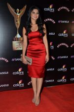 Jennifer Winget at Sansui Stardust Awards red carpet in Mumbai on 14th Dec 2014 (972)_548fd07e8afbd.JPG