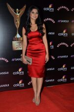 Jennifer Winget at Sansui Stardust Awards red carpet in Mumbai on 14th Dec 2014 (973)_548fd08050c15.JPG