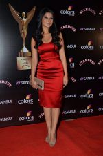 Jennifer Winget at Sansui Stardust Awards red carpet in Mumbai on 14th Dec 2014 (975)_548fd083341f3.JPG