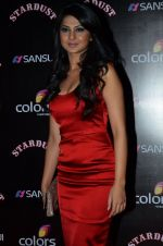 Jennifer Winget at Sansui Stardust Awards red carpet in Mumbai on 14th Dec 2014 (977)_548fd08575ed7.JPG