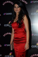 Jennifer Winget at Sansui Stardust Awards red carpet in Mumbai on 14th Dec 2014 (978)_548fd08675062.JPG