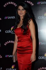 Jennifer Winget at Sansui Stardust Awards red carpet in Mumbai on 14th Dec 2014 (980)_548fd08890102.JPG
