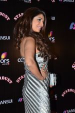 Pooja Misra at Sansui Stardust Awards red carpet in Mumbai on 14th Dec 2014 (629)_548fd1c97c994.JPG