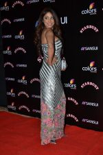 Pooja Misra at Sansui Stardust Awards red carpet in Mumbai on 14th Dec 2014 (630)_548fd1cb01735.JPG