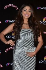 Pooja Misra at Sansui Stardust Awards red carpet in Mumbai on 14th Dec 2014 (639)_548fd1d582a89.JPG
