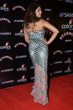 Pooja Misra at Sansui Stardust Awards red carpet in Mumbai on 14th Dec 2014 (641)_548fd1d7a3ebc.JPG