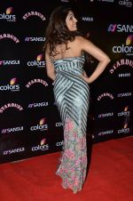 Pooja Misra at Sansui Stardust Awards red carpet in Mumbai on 14th Dec 2014 (642)_548fd1d8bf11b.JPG