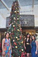 Sayali Bhagat at Poleys Xmas celebrations in Bandra, Mumbai on 15th Dec 2014 (45)_548fe2d8e38f2.JPG