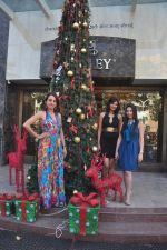 Sayali Bhagat at Poleys Xmas celebrations in Bandra, Mumbai on 15th Dec 2014 (50)_548fe2db5f20e.JPG