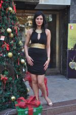 Sayali Bhagat at Poleys Xmas celebrations in Bandra, Mumbai on 15th Dec 2014 (6)_548fe2a0e259d.JPG