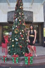 Sayali Bhagat at Poleys Xmas celebrations in Bandra, Mumbai on 15th Dec 2014 (14)_548fe2ad05504.JPG