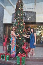 Sayali Bhagat at Poleys Xmas celebrations in Bandra, Mumbai on 15th Dec 2014 (44)_548fe2d7382fa.JPG