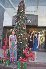Sayali Bhagat at Poleys Xmas celebrations in Bandra, Mumbai on 15th Dec 2014 (46)_548fe2da1e5b1.JPG