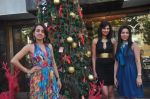 Sayali Bhagat at Poleys Xmas celebrations in Bandra, Mumbai on 15th Dec 2014 (53)_548fe2deda395.JPG