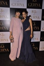 Neeta Lulla at Gehna Jewellers unveil the KJO For Gehna line by Karan Johar in Aqaba, Lower Parel on 16th Dec 2014 (78)_5491739ad0921.JPG