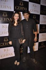 Prachi Shah at Gehna Jewellers unveil the KJO For Gehna line by Karan Johar in Aqaba, Lower Parel on 16th Dec 2014 (26)_549173ce54508.JPG