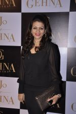 Prachi Shah at Gehna Jewellers unveil the KJO For Gehna line by Karan Johar in Aqaba, Lower Parel on 16th Dec 2014 (39)_549173d521657.JPG
