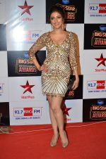 Aarti Chhabria at Big Star Entertainment Awards Red Carpet in Mumbai on 18th Dec 2014 (117)_549400e1d21bc.JPG