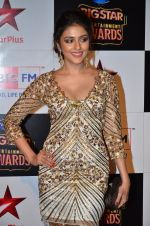 Aarti Chhabria at Big Star Entertainment Awards Red Carpet in Mumbai on 18th Dec 2014 (118)_549400eb03b1b.JPG