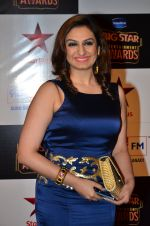 Akriti Kakkar at Big Star Entertainment Awards Red Carpet in Mumbai on 18th Dec 2014 (50)_549400f7e2c2b.JPG