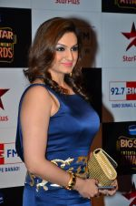 Akriti Kakkar at Big Star Entertainment Awards Red Carpet in Mumbai on 18th Dec 2014 (51)_549400f925ebd.JPG