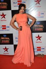 Kavita Verma at Big Star Entertainment Awards Red Carpet in Mumbai on 18th Dec 2014 (26)_549402ec135d3.JPG