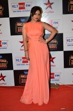 Kavita Verma at Big Star Entertainment Awards Red Carpet in Mumbai on 18th Dec 2014 (27)_549402ed46d1e.JPG