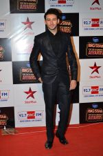 at Big Star Entertainment Awards Red Carpet in Mumbai on 18th Dec 2014 (118)_549401801e55a.JPG