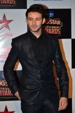 at Big Star Entertainment Awards Red Carpet in Mumbai on 18th Dec 2014 (119)_54940180ef76e.JPG