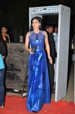 at Big Star Entertainment Awards Red Carpet in Mumbai on 18th Dec 2014 (122)_5494018311765.JPG