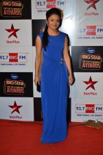 at Big Star Entertainment Awards Red Carpet in Mumbai on 18th Dec 2014 (13)_5494016aacced.JPG