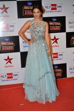 at Big Star Entertainment Awards Red Carpet in Mumbai on 18th Dec 2014 (138)_54940186ad723.JPG