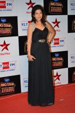 at Big Star Entertainment Awards Red Carpet in Mumbai on 18th Dec 2014 (156)_5494018947f4d.JPG