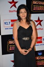 at Big Star Entertainment Awards Red Carpet in Mumbai on 18th Dec 2014 (157)_5494018a26cad.JPG