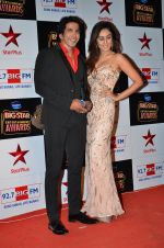at Big Star Entertainment Awards Red Carpet in Mumbai on 18th Dec 2014 (173)_549401909b776.JPG