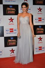 at Big Star Entertainment Awards Red Carpet in Mumbai on 18th Dec 2014 (195)_549401930b17c.JPG
