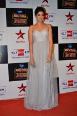 at Big Star Entertainment Awards Red Carpet in Mumbai on 18th Dec 2014 (196)_549401947cc7a.JPG