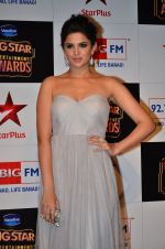 at Big Star Entertainment Awards Red Carpet in Mumbai on 18th Dec 2014 (199)_54940198099d9.JPG