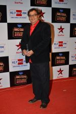 at Big Star Entertainment Awards Red Carpet in Mumbai on 18th Dec 2014 (210)_54940198dd34e.JPG