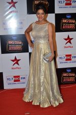 at Big Star Entertainment Awards Red Carpet in Mumbai on 18th Dec 2014 (212)_5494019b4b109.JPG
