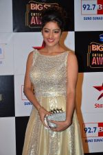 at Big Star Entertainment Awards Red Carpet in Mumbai on 18th Dec 2014 (213)_5494019c52030.JPG