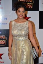 at Big Star Entertainment Awards Red Carpet in Mumbai on 18th Dec 2014 (214)_5494026c0b1d2.JPG