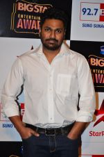 at Big Star Entertainment Awards Red Carpet in Mumbai on 18th Dec 2014 (22)_54940170e472a.JPG