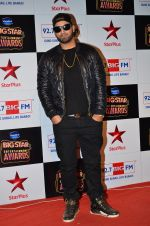 at Big Star Entertainment Awards Red Carpet in Mumbai on 18th Dec 2014 (227)_5494019d293fb.JPG