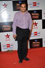 at Big Star Entertainment Awards Red Carpet in Mumbai on 18th Dec 2014 (28)_54940172a1d7e.JPG